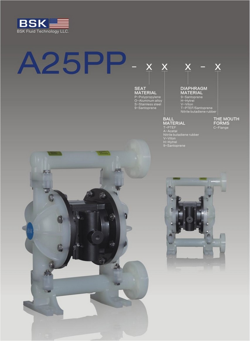 A25PP