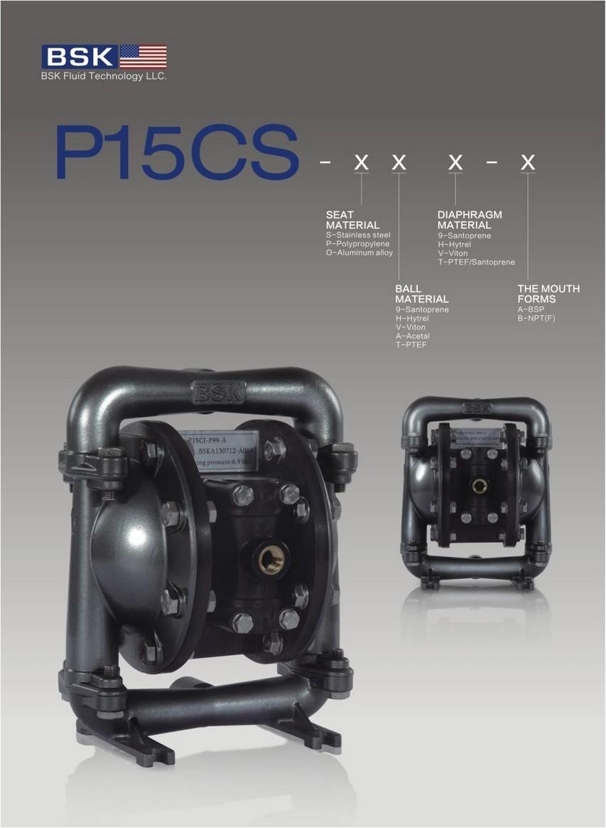 P15CS