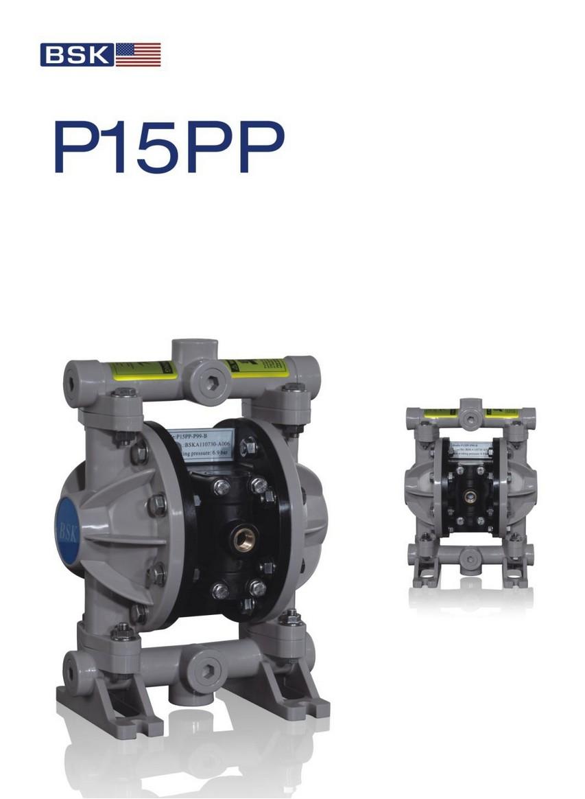 P15PP